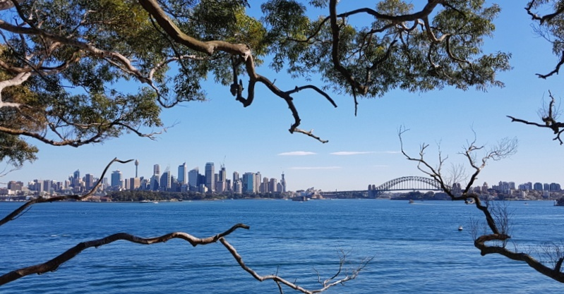 A view of Sydney Harbour across the water from Bradley's Head.